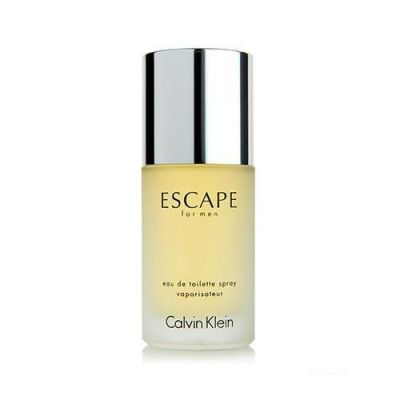 Calvin Klein Perfume Masculino Escape For Men - EDT 100ml