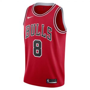 REGATA CHICAGO BULLS SWINGMAN