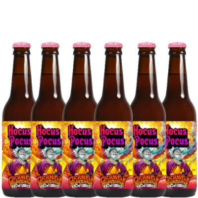 Combo Hocus Pocus Orange Sunshine - 6 Cervejas