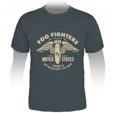 Camiseta Stamp Foo Fighters | One by One | Cinza