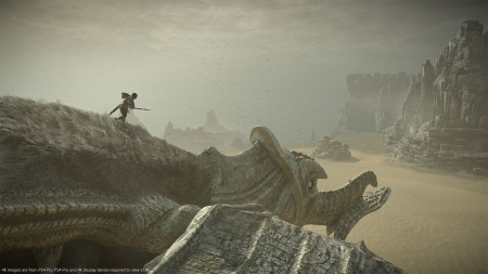 Shadow of The Colossus - PS4  - foto principal 9