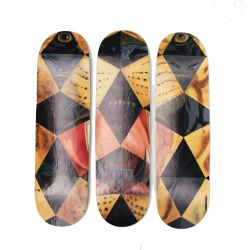 Conjunto de Shapes Decorativos de Parede - Wallride Dali Tiger