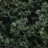 Fine-Leaf Foliage Dark Green - WOO-F1130
