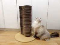 PETGAMES CAT TOWER LOSANGO - ARRANHADOR TORRE NATURAL PARA GATOS