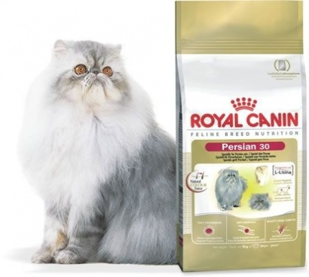 ROYAL PERSIAN ADULTO A PARTIR DE: