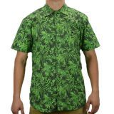 Camisa Grapixo Atlantic verde