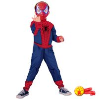 Fantasia Spiderman Amazing 2 Luxo