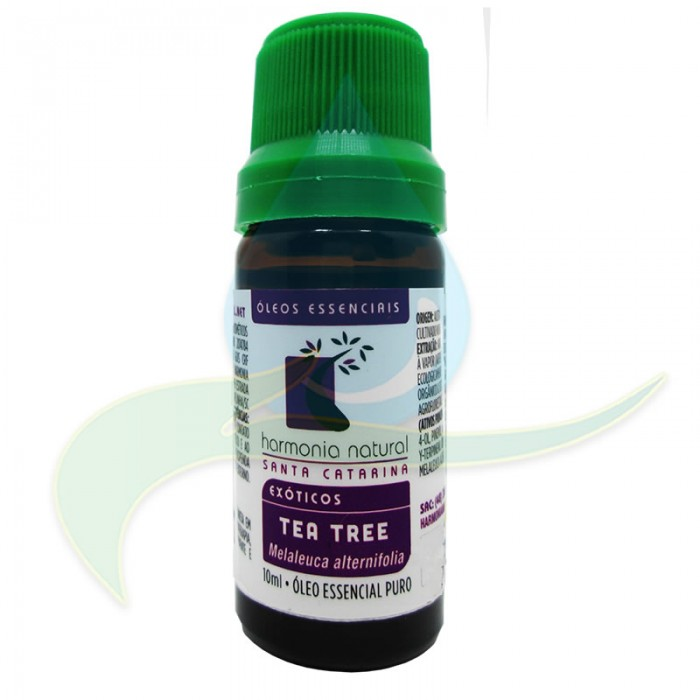 Óleo Essencial de Tea tree (Melaleuca alternifolia) - Harmonia Natural - 10ml