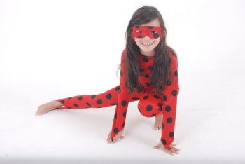 Fantasia Lady Bug Infantil