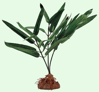 TETRA WATER WONDERS (PLANTA SEDA ARTIFICIAL) MERMAID WEED 15CM