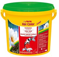 SERA KOI COLOR LARGE BALDE 1KG - UN