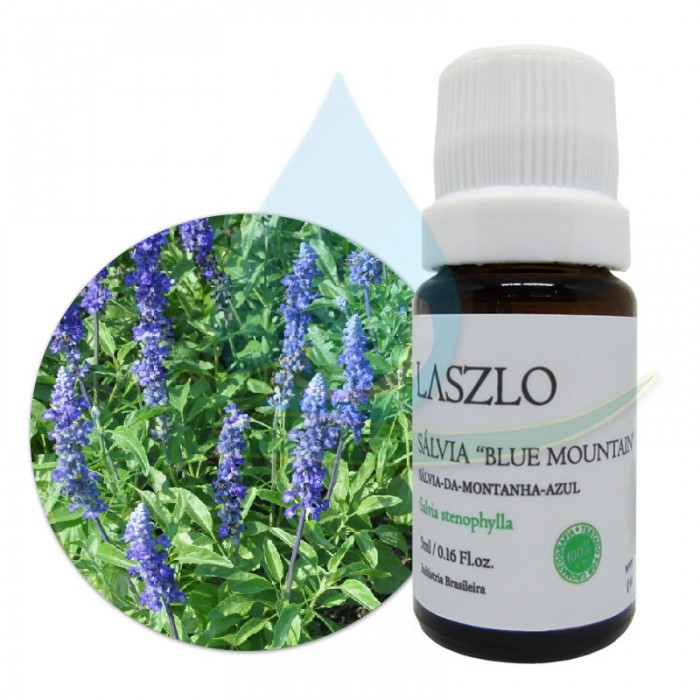 Óleo Essencial de Sálvia Blue Mountain - Laszlo - 5ml