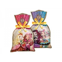 - Sacola Surpresa Ever After High - Pct c/ 8 Unidades -  Cod.102749.2 - Regina