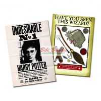 - Kit Decorativo Harry Potter - 1 Painel de 64cm x 45cm e 9 Enfeites - Festcolor